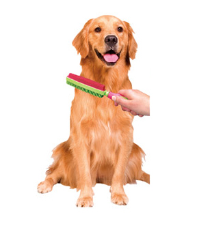 Use right on your pet to groom and remove loose fur.